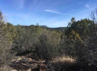 Home for sale: Xx Wide Canyon, Silver City, NM 88061