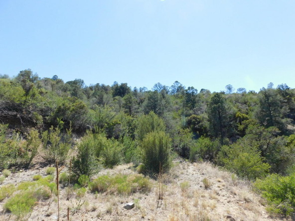 539 Sleepyhollow Cir., Prescott, AZ 86303 Photo 18