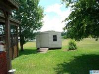 Home for sale: 132 Rolling Meadows Ln., Vincent, AL 35178