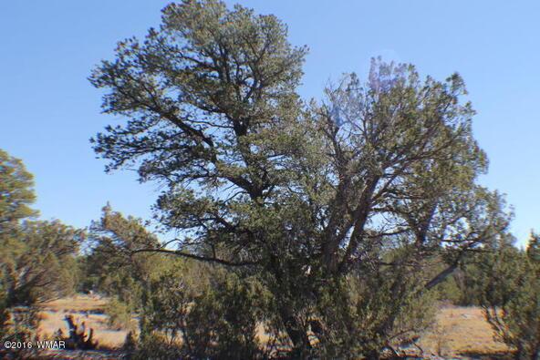 2 Acres Off Of Acr N. 3114, Vernon, AZ 85940 Photo 9