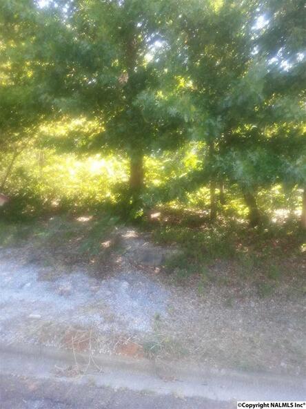 617 Wellingburg Rd., Huntsville, AL 35803 Photo 1