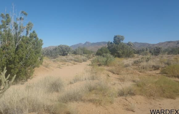7241 E. Shadow Ridge Dr., Yucca, AZ 86438 Photo 16