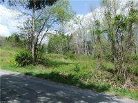Home for sale: 387 Aiken Rd., Rosman, NC 28772