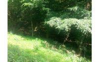 Home for sale: Lot#2 Briar Creek Estates, Ellijay, GA 30522