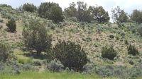 Home for sale: 0 Kayenta Dr., Elko, NV 89801