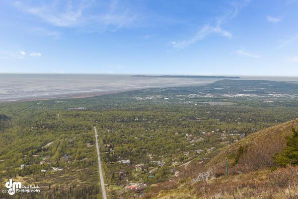 9820 Meadow Rd., Anchorage, AK 99516 Photo 7