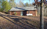 Home for sale: 1533 Brookhaven Ln., Blue Ridge, GA 30555