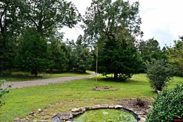 103 Mc 123, Oakland, AR 72661 Photo 11