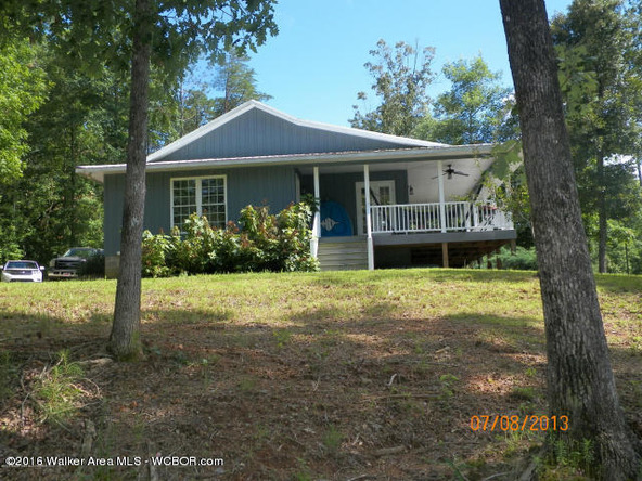 1202 Forest Service Rd., Arley, AL 35541 Photo 19