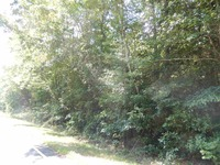Home for sale: 00 Rice Cemetary Rd. 5.73 Acres, Anderson, SC 29621
