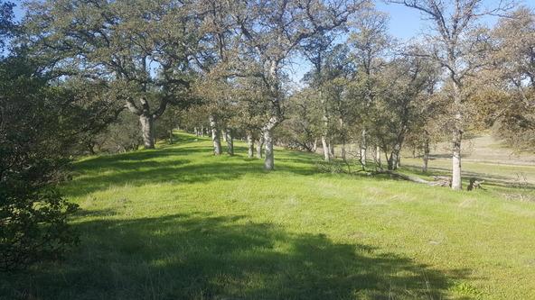 Basin Hollow, Millville, CA 96062 Photo 16
