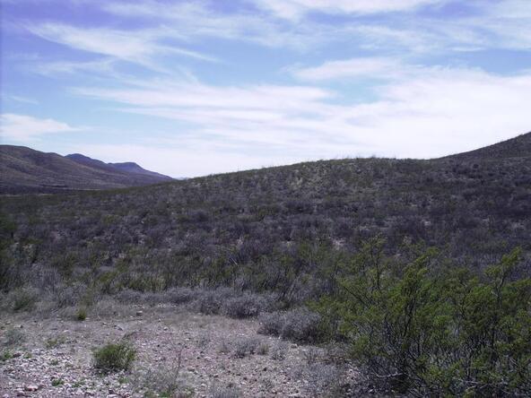 405-05 E. Lois Ln., Douglas, AZ 85607 Photo 4