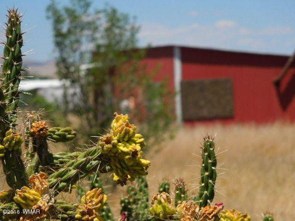 431 S. Tumbling T Dr., Springerville, AZ 85938 Photo 1
