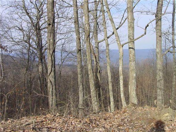 1 Jackson Point Rd., Sewanee, TN 37375 Photo 6