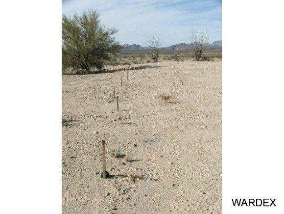 16775 S. Douglas Ln., Yucca, AZ 86438 Photo 9