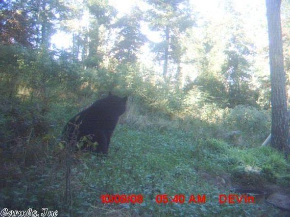 1127 Nature Dr., Saint Joe, AR 72675 Photo 27
