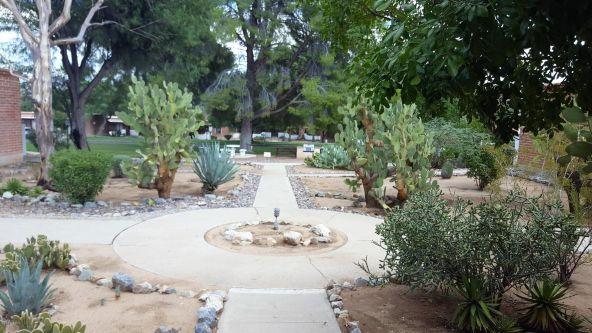364 S. Paseo Lobo, Green Valley, AZ 85614 Photo 7
