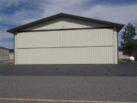 Home for sale: 336 Deinhard Ln., McCall, ID 83638