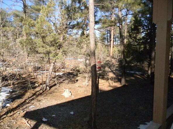 2800 S. Garretts Way, Show Low, AZ 85901 Photo 35