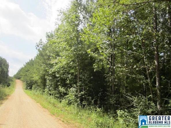 3.73 Acres Thomas Ln., Ashland, AL 36251 Photo 5
