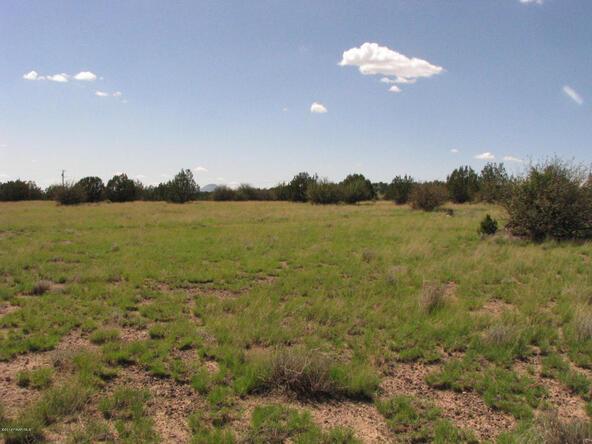 206e Bixler Trail, Ash Fork, AZ 86320 Photo 9