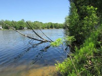 Home for sale: 6 River Oaks Point, Gladwin, MI 48624