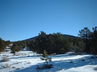 7382 N. Apache Avenue, Williams, AZ 86046 Photo 4