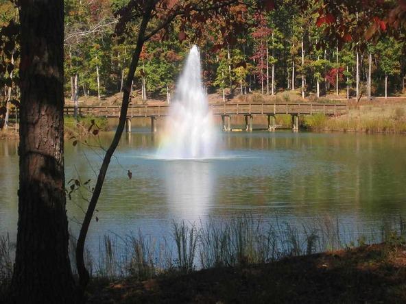 1010 East Grove, Greensboro, GA 30642 Photo 14