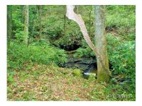 Home for sale: L3 Steel Creek Rd., Brevard, NC 28712