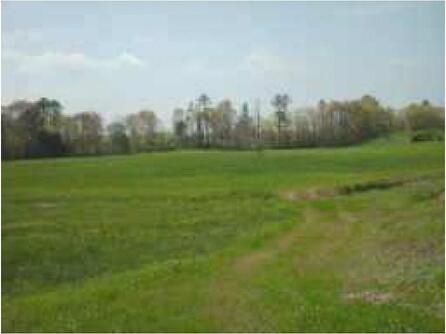 Tr1 Bill Nelson Rd., Taylorsville, GA 30178 Photo 1
