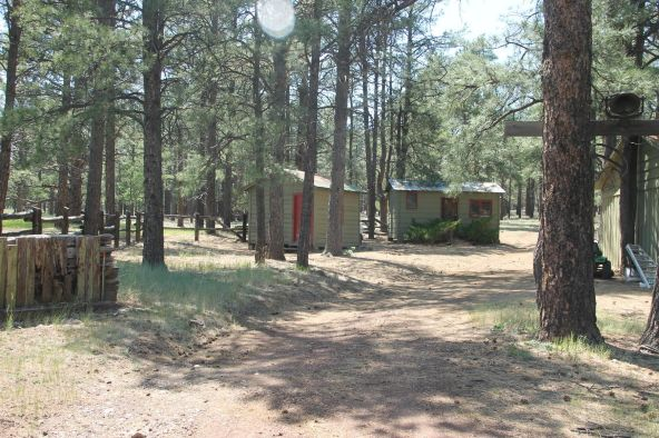 581 Cooper Ranch Rd., Williams, AZ 86046 Photo 21