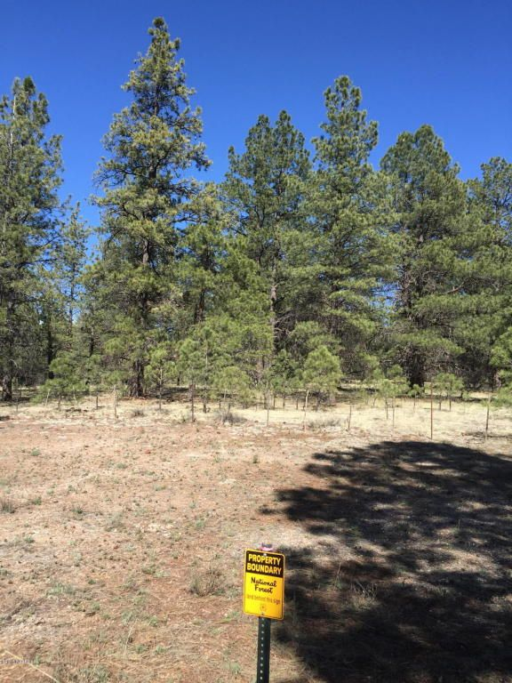3602 E. Mountain Man Trail, Williams, AZ 86046 Photo 28