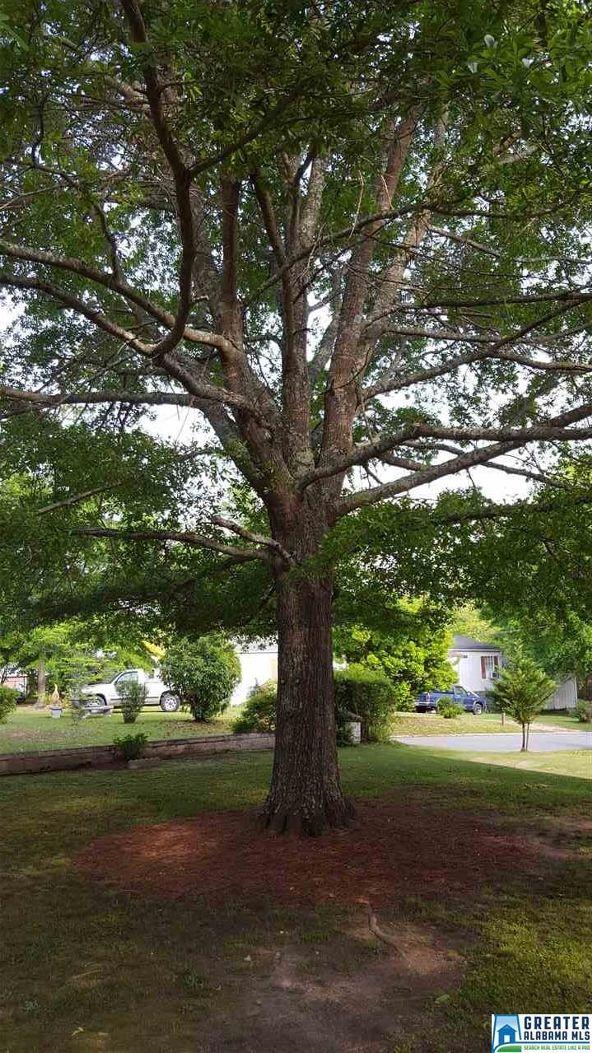 425 College St., Roanoke, AL 36274 Photo 16