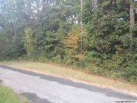 Home for sale: 383 Smoke Rise Trail, Warrior, AL 35180