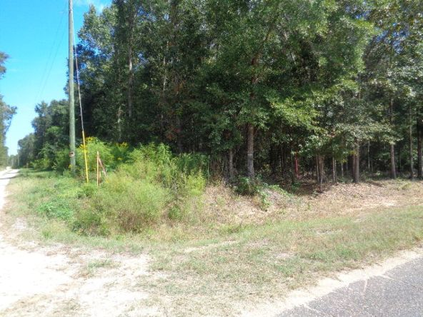 15.6+-Ac Johnny Murphy Rd., Dothan, AL 36301 Photo 3