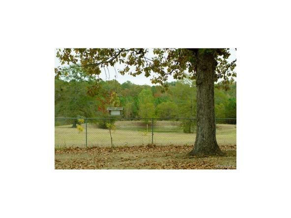 452 Burlingame Rd., Letohatchee, AL 36047 Photo 22