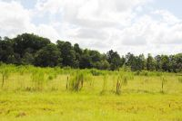 Home for sale: Lot 3 Meadow Ln., Fitzgerald, GA 31750