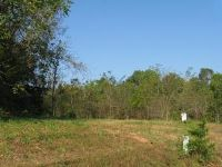 Home for sale: Lot 27 Bywater Dr., Cape Fair, MO 65624