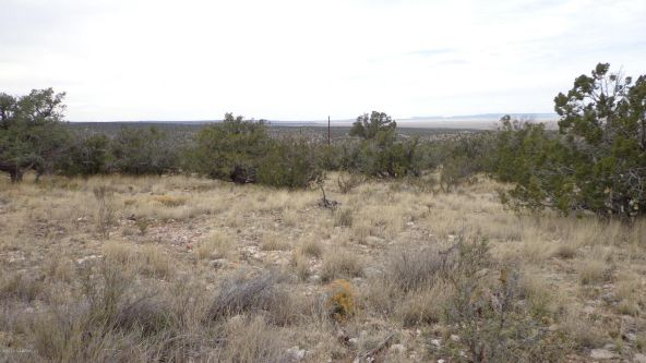 952 Bridge Canyon Unit 5 Lot 952, Seligman, AZ 86337 Photo 4