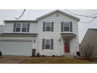Home for sale: 8638 Rifle River, Fowlerville, MI 48836