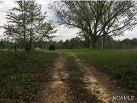 Home for sale: 885 Hamm Rd., Blountsville, AL 35031