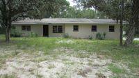 Home for sale: 11429 S.E. Hwy. 464c, Ocklawaha, FL 32179