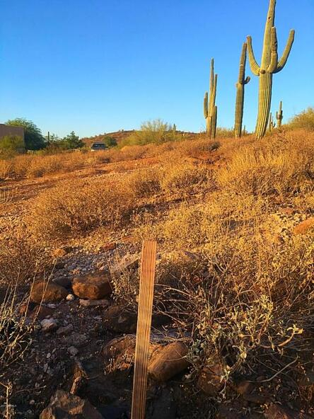1700 W. Sentinel Rock - W 5 Rd., Phoenix, AZ 85086 Photo 4
