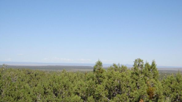 514 Westwood Ranch Lot 514, Seligman, AZ 86337 Photo 1