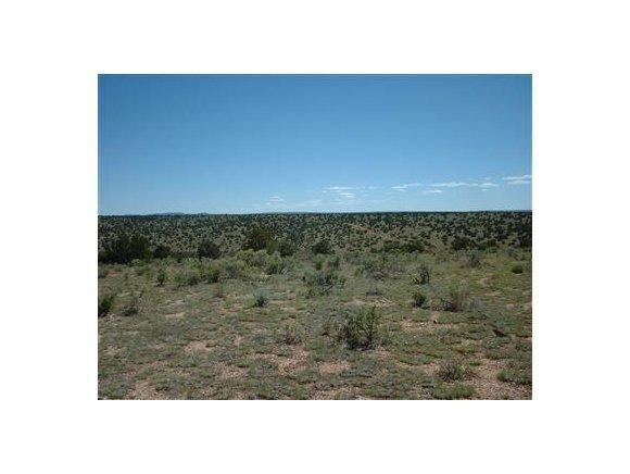 6808 S. Roadrunner Ln., Williams, AZ 86046 Photo 6