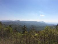 Home for sale: 0 Potato Patch Mnt Rd., Ellijay, GA 30522