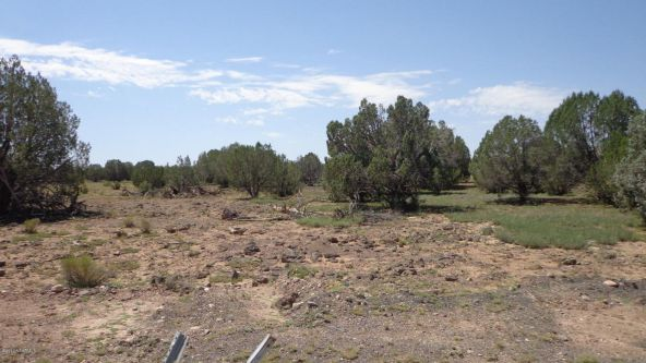 261 Juniperwood Ranch Lot 261, Ash Fork, AZ 86320 Photo 58
