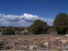 13300 N. Yaqui, Prescott, AZ 86305 Photo 3