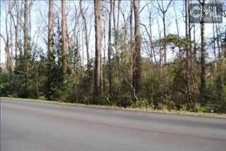 Lot 4 Hallbrook Dr., Columbia, SC 29209 Photo 1