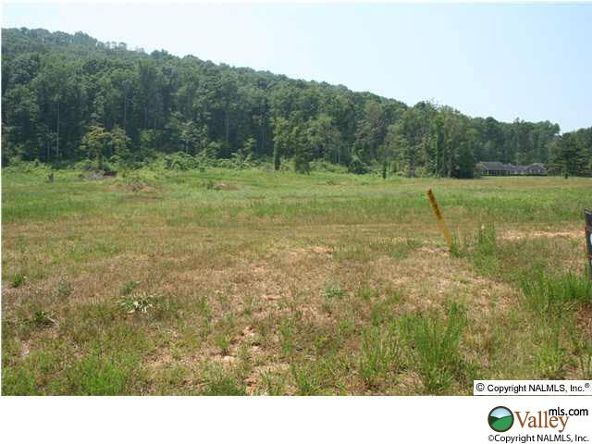 101 Lake Creek Dr., Guntersville, AL 35976 Photo 9